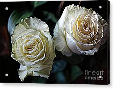 A Perfect Pair Acrylic Print