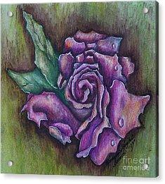 A Rose    Acrylic Print by Linda Simon
