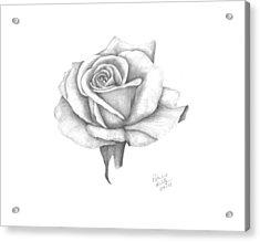 A Roses Beauty Acrylic Print