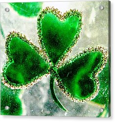A Shamrock On Ice Acrylic Print