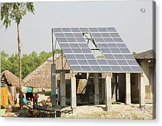 A Wwf Project To Supply Electricity Acrylic Print