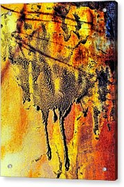 Ablaze Acrylic Print by Tom Druin