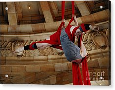 Aerial Ribbon Performer At Pennsylvanian Grand Rotunda Acrylic Print