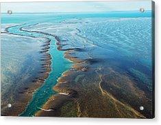 Aerial View Of Montgomery Reef Acrylic Print by Laurenepbath