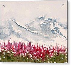 Alaska Fireweed  Acrylic Print by Carolyn Doe