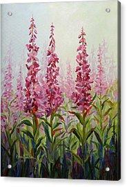 Alaska Fireweed Acrylic Print
