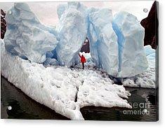 Alaskan Iceberg Acrylic Print by Mark Newman