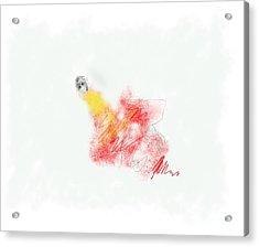 Alone Acrylic Print by Rc Rcd
