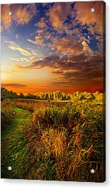 Along The Way Acrylic Print by Phil Koch