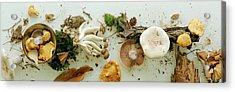 An Assortment Of Mushrooms Acrylic Print