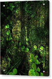 An Earthy Place Acrylic Print by Shirley Sirois