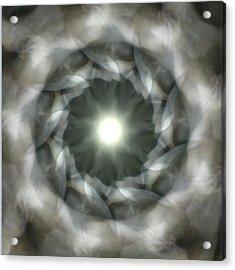 Ancient Light II Acrylic Print by Lisa Lipsett