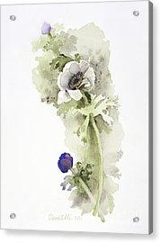 Anemone 4 Acrylic Print