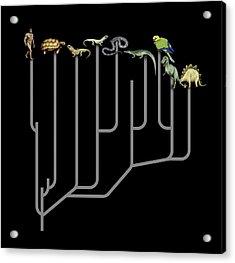 Animal Family Tree Acrylic Print by Mikkel Juul Jensen