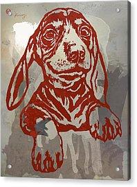Animal Pop Art Etching Poster - Dog 5 Acrylic Print by Kim Wang