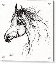 Arabian Horse Drawing 37 Acrylic Print by Angel  Tarantella