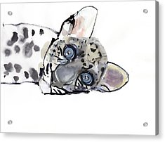 Arabian Leopard Acrylic Print