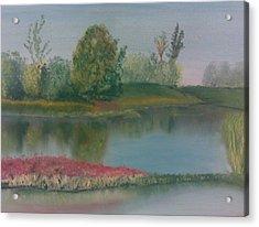 Arboretum Acrylic Print by Steve Hermann