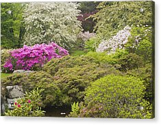 Asticou Azelea Garden - Northeast Harbor - Mount Desert Island - Maine Acrylic Print by Keith Webber Jr