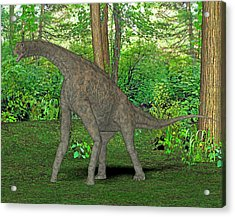 Atlasaurus Dinosaur Acrylic Print by Friedrich Saurer
