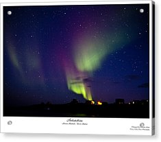 Aurora Australis Acrylic Print by David Barringhaus