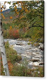 Ausable River Acrylic Print