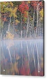 Autumn Colors And Mist On Council Lake Acrylic Print