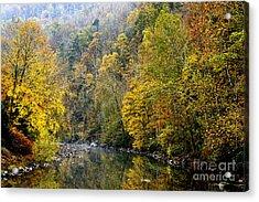 Autumn Elk River Acrylic Print by Thomas R Fletcher