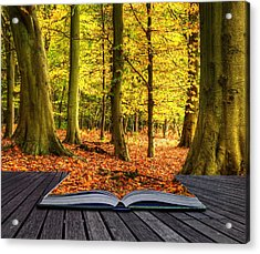 Autumn Fall Forest Landscape Magic Book Pages Acrylic Print by Matthew Gibson