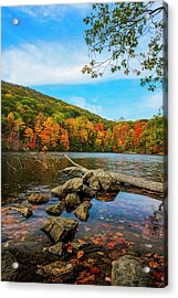 Autumn Foliage At Hessian Lake, Bear Acrylic Print by F. M. Kearney
