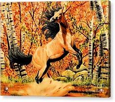 Autumn Frolick Acrylic Print
