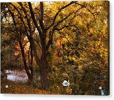 Autumn Glow Acrylic Print by Jessica Jenney