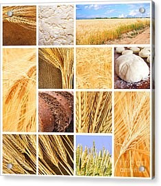 Autumn Harvest Collage Acrylic Print by Boon Mee