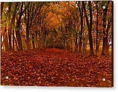 Acrylic Print featuring the photograph Autumn II by Raymond Salani III