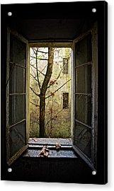 Autumn In Asylum Acrylic Print