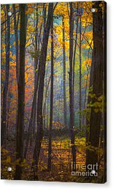 Autumn In Connecticut Acrylic Print by Diane Diederich