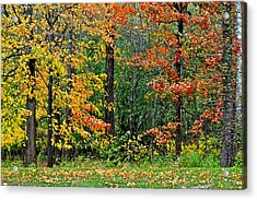 Autumn Landscape Acrylic Print by Frozen in Time Fine Art Photography
