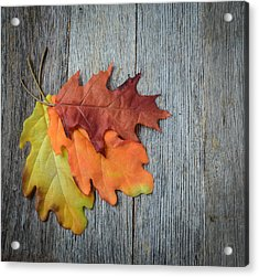 Autumn Leaves On Rustic Wooden Background Acrylic Print