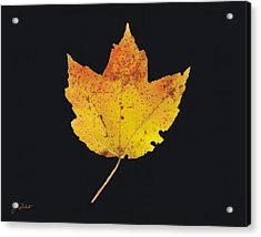 Autumn Mountain Maple Leaf Acrylic Print