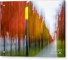 Autumn Park 1 Acrylic Print by Susan Cole Kelly Impressions