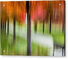 Autumn Park 3 Acrylic Print by Susan Cole Kelly Impressions