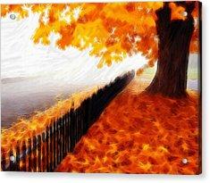 Autumn Acrylic Print by Steve K