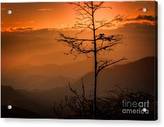 Autumn Stillness Acrylic Print