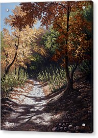 Autumn Trails Acrylic Print