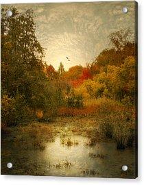 Autumn Wetlands Acrylic Print by Jessica Jenney