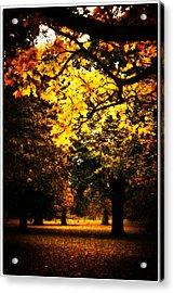 Autumnal Walks Acrylic Print