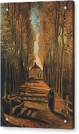 Avenue Of Poplars In Autumn Acrylic Print by Vincent van Gogh