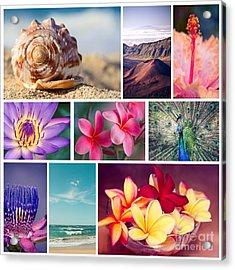 Awakening In Paradise Acrylic Print by Sharon Mau