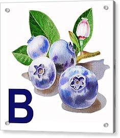 B Art Alphabet For Kids Room Acrylic Print by Irina Sztukowski