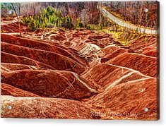 Acrylic Print featuring the photograph Badlands by Michaela Preston